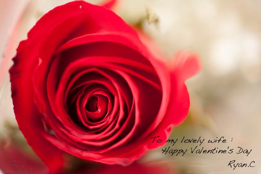 Valentine Day 2012